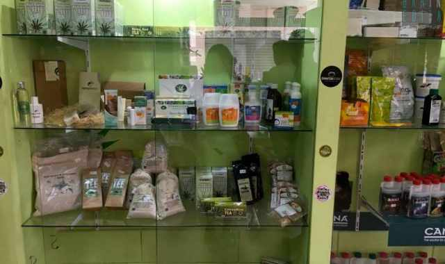 L�unico �grow shop� di Bari, l� dove si vendono legalmente semi di cannabis