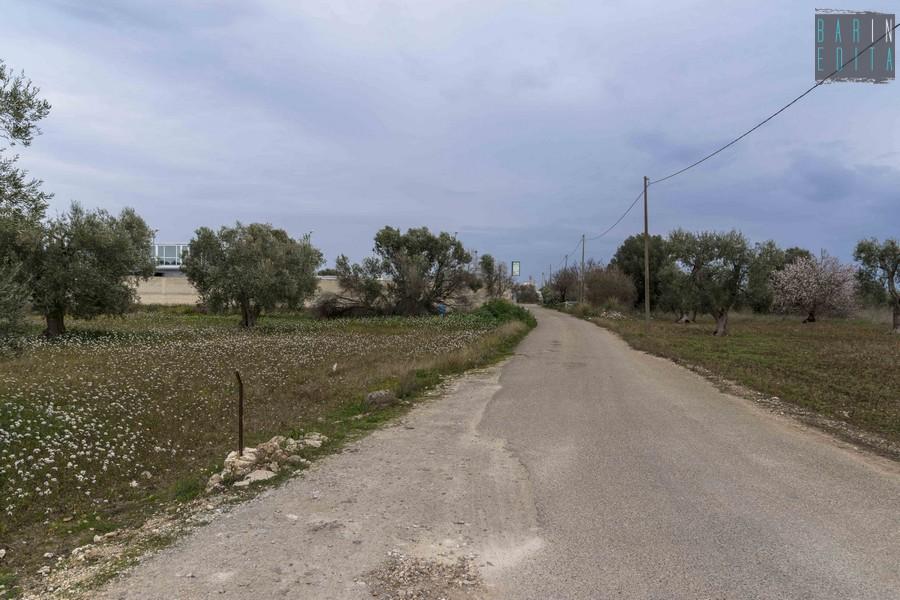 Galleria foto bari l 39 abbandonata strada privata deserto for Strada privata
