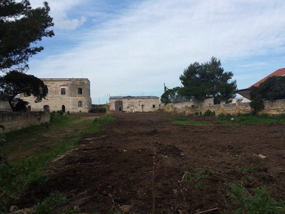 Palese ruspe in azione il villaggio neolitico rischia di - A letto con eva esordienti in azione ...