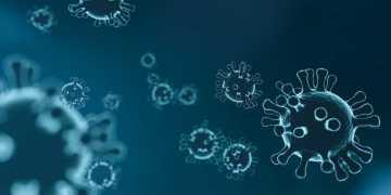 Coronavirus in Puglia 5 nuovi casi: positivo lo 020% dei tamponi