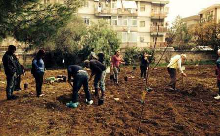Bari, una piccola campagna tra i palazzi cittadini: è l'orto Effetto terra